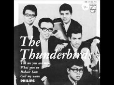 The Thunderbirds -  My Lonely Heart ( rare version with Orchestra )