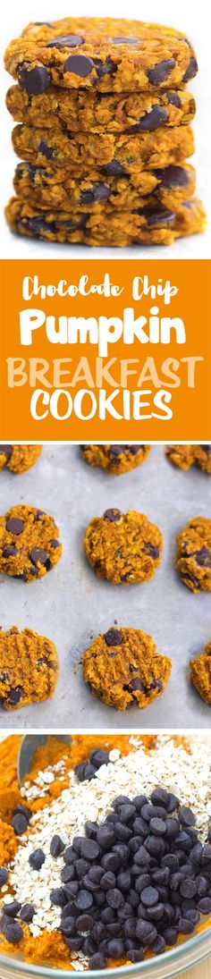 Soft, chewy pumpkin chocolate chip breakfast cookies packed with wholesome oats and pumpkin!