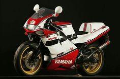 Motorbike - cute photo