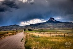 Heart Mountain Wyoming---Such a great book on the history of this place, sad its not taught in schools