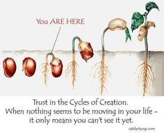 You are here.  Trust the cycles of creation.  When nothing seems to be moving in your life--it means you can't see it yet.