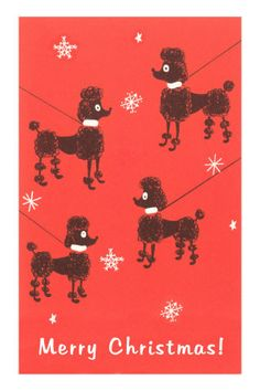 Merry Christmas Poodle Card