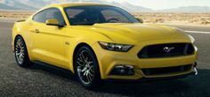 2015 Mustang colors: What's your favorite? http://www.themustangnews.com/content/2013/12/2015-mustang-colors-whats-your-favorite