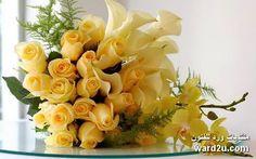 Yellow roses....
