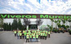 Plantas artificiales viveros murcia on pinterest - Viveros en murcia ...
