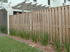 Timber Fencing, Picket Fences, Timber Paling Fence - Amazing Fencing about $20/m
