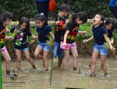 P1 #RoyalPrimaryAcademy Exit Point T2 2014-2015: Living Things #IPC #School #Kuningan Jakarta