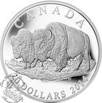 Canada: 2014 $20 The Bull and His Mate Bison Silver Coin