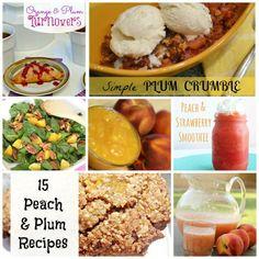 15 Fabulous Summer Peach and Plum #Recipes