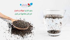بذور الشيا فوائد و اضرار لم تكن تعلمها من قبل تفاصيل و معلومات مهمة لصحتك Sehajmal Food Beauty Condiments