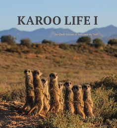 Karoo Keepsakes I Ebook - Karoo Ebooks Oh The Places You'll Go, Places To Travel, New Books, South Africa, Travel Inspiration, My Life, Road Trip, Adventure, Landscapes