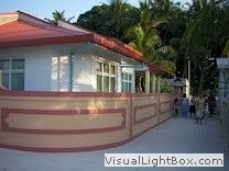 Guest Houses in Maldives.Discover the real Maldives Maldives Accommodation, Maldives Tourism, Maldives Holidays, Small Island, Flora And Fauna, Wow Products, Islands, Things To Do, Exotic