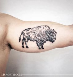 Bison Tattoo                                                                                                                                                                                 More