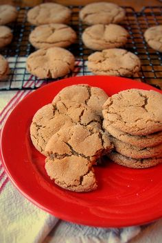 You're new favorite Christmas cookies recipe: Chewy Ginger Cookies! Like ginger snaps but soft and chewy. Shortbread Recipes, Cookie Recipes, Chewy Ginger Cookies, Chocolate Cream Cheese, Christmas Cookies, Christmas Baking, Quick Easy Meals, Cookies Et Biscuits, Tiramisu