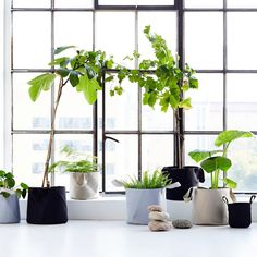 Trimm Copenhagen - Soft Pots – Addition - Globally Sourced Home Accessories