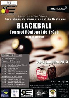 Marque Bretagne / Ligue de Bretagne de Billard / Affiche / 2014