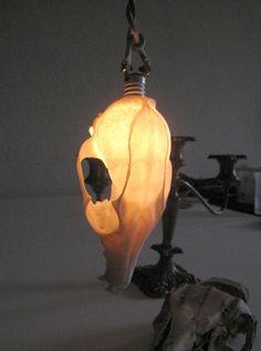 skull light, decor
