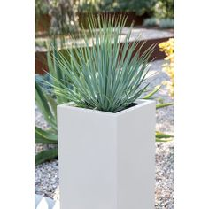 Metallic Series Galvanized Steel Pot Planter & Reviews | Birch Lane