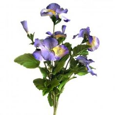 This Artificial Pansy Bush with stunning large blue and yellow flowers and bright green foliage will brighten any room or office and will not wither or die after one week when you forget to water it like real plants do! Real Plants, Artificial Plants, Bright Green, Pansies, Yellow Flowers, Indoor Plants, House Plants, Outdoors, Forget