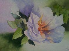 Fleur - aquarelle