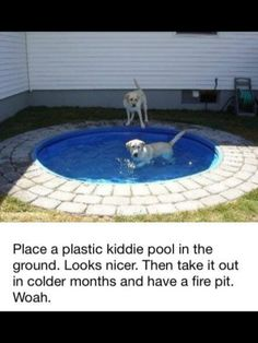Dog Pond - Place a plastic kiddie pool in the ground. It'd be easy to clean and looks nicer than having it above ground. Big dogs can't chew it up or drag it around. Not into it being a dog pond but would be cute for a kiddie pool or pond :) Dog Pond, Diy Pet, Outdoor Fun, Outdoor Decor, Outdoor Ideas, Outdoor Life, Diy Firepit Ideas, Diy Backyard Ideas, Kiddie Pool