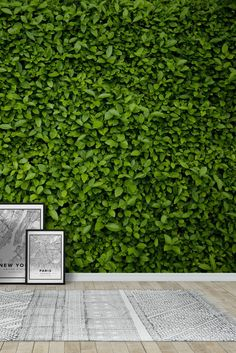 Green leaves wall Wall Mural - Wallpaper