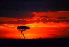 Ma a dir di molti che hanno viaggiato in Africa, il più spettacolare è il tramonto che si gode in Tanzania: le pianure del parco Serengeti popolate di antilopi sono uno degli spettacoli più incredibili che si possano ammirare in natura