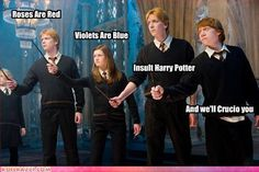 A funny poem to everyone who dares insulting Harry potter :')