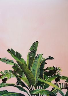 Tropical Palm leaves on pink Art Print by Anna Rachel Green