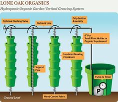 hydroponic garden infographic by daftgirly via flickr