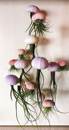 TRES plantas de aire de medusas colgantes púrpura/blanco