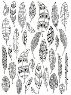 Zentangle feathers colouring page Doodle Art, Doodle Drawings, Bird Doodle, Floral Doodle, Doodle Patterns, Zentangle Patterns, Embroidery Patterns, Doodles Zentangles, Henna Patterns