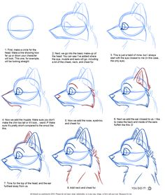 how to draw a wolf - Google zoeken