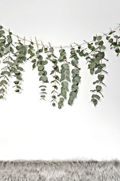 A quick (and easy) DIY eucalyptus garland - DIY home decor - Your DIY Family Here is a quick and easy diy eucalyptus garland to make this Christmas. This eucalyptus garland makes a really pretty backdrop to a dining table. Minimal Christmas, Christmas Crafts, Christmas Decorations, Homemade Christmas, Christmas Garlands, Scandi Christmas, Natural Christmas, Christmas Mood, Christmas Christmas