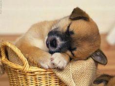 aaaaw sweet baby <3