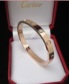 Cartier Love Bracelet- I want this for my birthday - hint hint - and will keep pinning it until I get it!