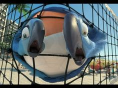 When Blu (Jesse Eisenberg), a domesticated macaw from small-town Minnesota, meets the fiercely independent Jewel (Anne Hathaway), he takes off on an adventur. Rio 2011, Movie Blog, As Time Goes By, Youtube Stars, Official Trailer, Watch V, Movie Trailers, Movies Online, Movie Stars