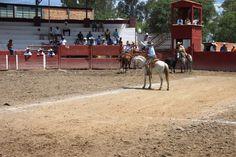 Charreada de excelencia y calidad fue la que se vivió en Rincón de Romos. ~ Ags Sports
