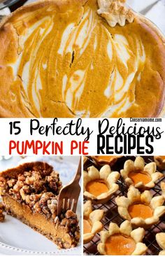 Nothing says Thanksgiving More than Pumpkin pie, Check out15 Perfect Delicious Pumpkin Pie Recipes that will make your gathering a huge hit!Some traditional and some very different than anything you've ever tasted before! via @conservamom
