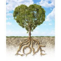 Cross section of soil showing a heart-shaped tree with its roots as text Love Canvas Art - Leonello CalvettiStocktrek Images (13 x 16)