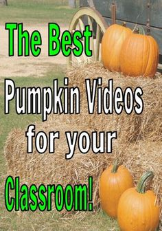 Find the best pumpkin videos for your classroom! There are a variety of videos…
