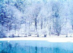 Vinter morgen