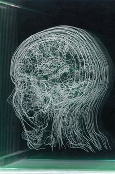 ANGELA PALMER_Layered MRI Self-Portraits Engraved in Glass Sheets