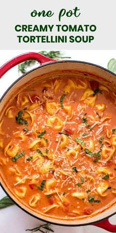 One-Pot Creamy Tomato Tortellini Soup Recipe – The EASIEST homemade creamy tomato tortellini soup made from scratch! Loaded with fresh herbs, diced tomatoes, and three-cheese tortellini! pasta tortellini One Pot Tomato Tortellini Soup Best Soup Recipes, Vegetarian Recipes, Cooking Recipes, Favorite Recipes, Healthy Recipes, Tomato Soup Recipes, Crockpot Tomato Soup, Crock Pot Soup Recipes, Italian Soup Recipes