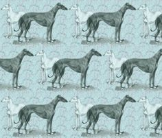 greyhound and whippet fabric, brand new fabric design by dogdaze