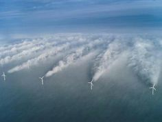 wind turbine wake effect, Denmark
