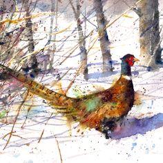 RINGNECK PHEASANT Watercolor Print by Dean Crouser