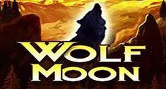 Биткоин-казино - Онлайн-казино, удостоенное престижных премий | BitStarz Играйте в лучшие игры в онлайн-казино и получите бонус за регистрацию 100% до $500 + 20 бесплатных вращений. #казино #играть #слоты Online Casino Slots, Online Casino Games, Casino Sites, Slot Online, Safe Games, Casino Promotion, Win Money, Wolf Moon, Best Casino