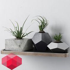 "Free 3D model: Plants "" Redhome Studio http://www.lensdor.com/redhome-studio/"