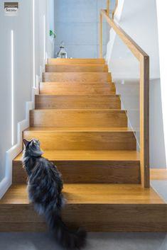 Schody dywanowe, balustrada szklana. Realizacja w Rybniku – Sob-Drew Schody drewniane Home Stairs Design, Staircase Handrail, House Stairs, Kuta, Stairways, Architecture, Villa, Dressing, Magic